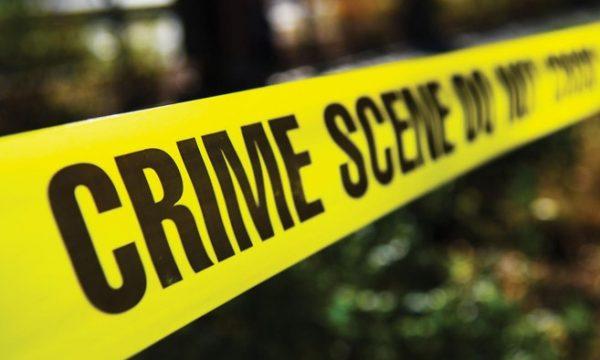 detaje-nga-krimi-ne-shkoder:-55-vjecari-e-vrau-motren-me-silenciator,-pastruesja-e-lajmeroi-policine